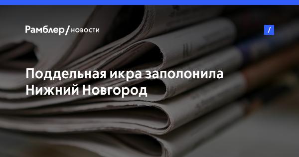 85 кілограмів червоної ікри розчавили бульдозером російські терористи в окупованому Луганську - Цензор.НЕТ 2465