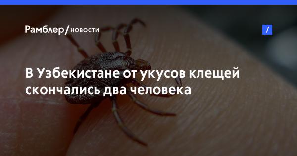 В Узбекистане от укусов клещей скончались два человека
