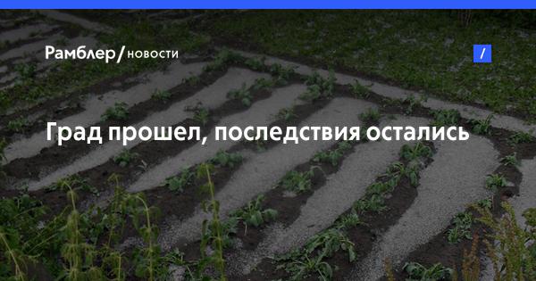 Глава Минсельхоза Армении: фермер часто не знает, что производить