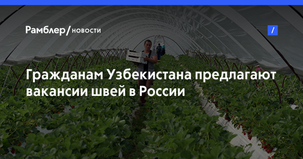 Гражданам Узбекистана предлагают вакансии швей в России