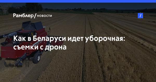 Как в Беларуси идет уборочная: съемки с дрона