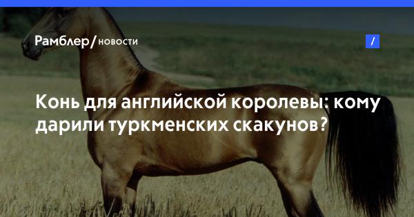 Конь для английской королевы: кому дарили туркменских скакунов?