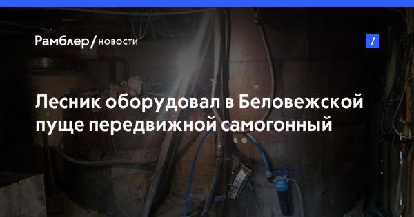 Лесник оборудовал в Беловежской пуще передвижной самогонный заводик