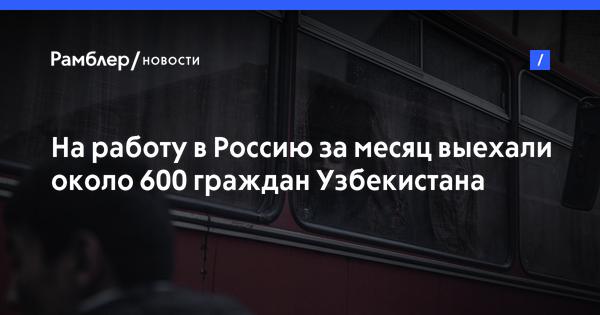 В Россию за месяц приехали около 600 трудовых мигрантов из Узбекистана