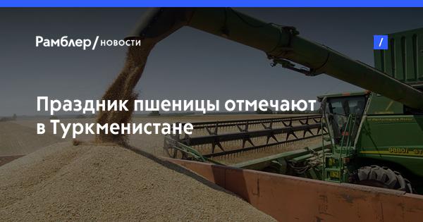 Праздник пшеницы отмечают в Туркмениcтане