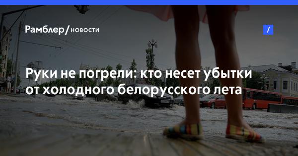 Руки не погрели: кто несет убытки от холодного белорусского лета