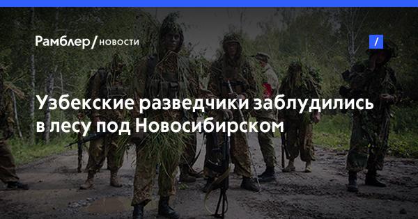 Узбекские разведчики заблудились в лесу под Новосибирском